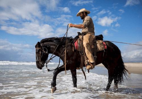 Beim Westernreiten arbeiten Reiter und Pferd locker zusammen