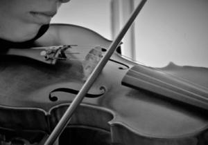 Ein Beispiel für ein Streichinstrument - die Violine