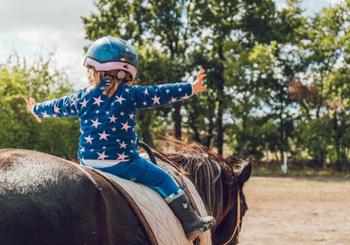 In den ersten Reitstunden lernst Du den Rhythmus und die Gangarten des Pferdes kennen