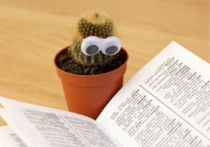 Zur Sachliteratur gehören unter anderem Wörterbücher und Nachschlagewerke